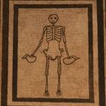 Scheletro conaskol, pompei