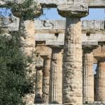 Temples grecs de Paestum