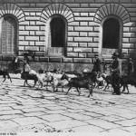 foto antica di brogi, la vita nelle strade di napoli