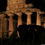paestum_tempio_di_atene